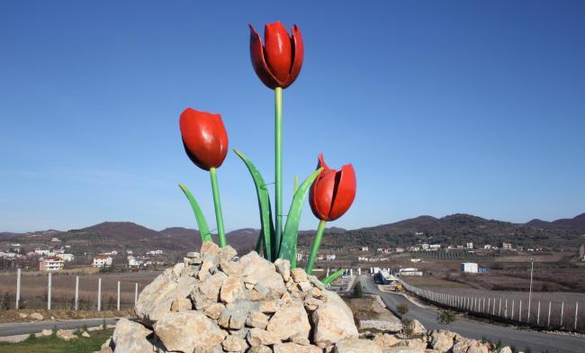 Tulip Square - Ashraf 3