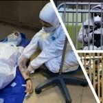 Doctors and Nurses work with insufficient equipment in Iran
